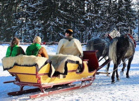 Horse Carriage Ride - Koscieliska Valley