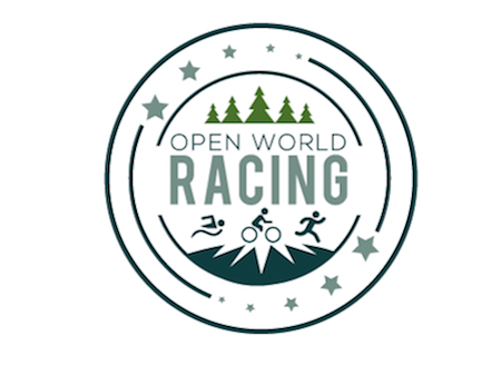 Open World Racing